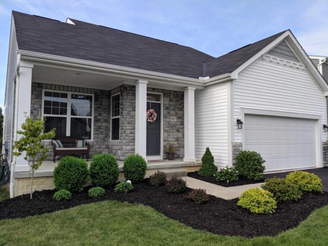 5917 Kilbeggan Street, Galloway, OH 43119 (MLS #219030199) :: Signature Real Estate