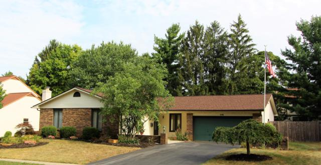 256 Greenglade Avenue, Worthington, OH 43085 (MLS #219030213) :: Exp Realty