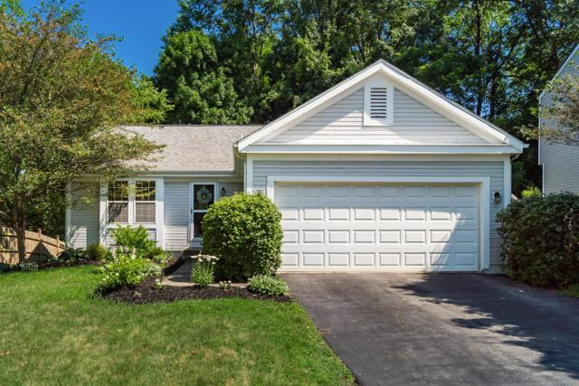 3884 Deer Knoll Drive, Gahanna, OH 43230 (MLS #219030250) :: The Clark Group @ ERA Real Solutions Realty