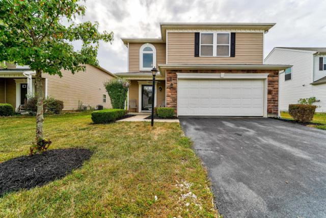 2703 Natalia Drive, Columbus, OH 43232 (MLS #219030406) :: RE/MAX ONE