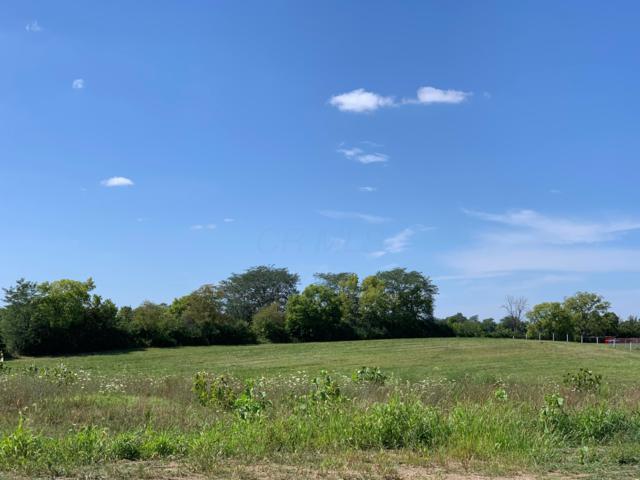 0 Norton Road, Galloway, OH 43119 (MLS #219030492) :: Signature Real Estate