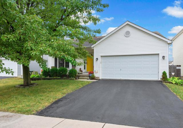 469 Ruffin Drive, Galloway, OH 43119 (MLS #219030530) :: The Raines Group
