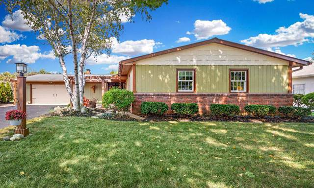 3716 Braidwood Drive, Hilliard, OH 43026 (MLS #219034499) :: Signature Real Estate