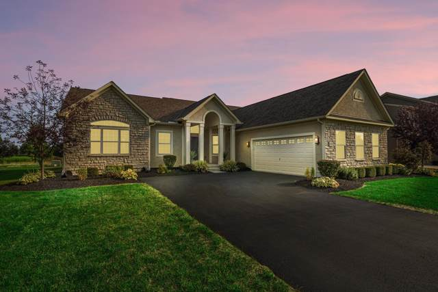 900 Little Bear Loop, Lewis Center, OH 43035 (MLS #219034899) :: ERA Real Solutions Realty