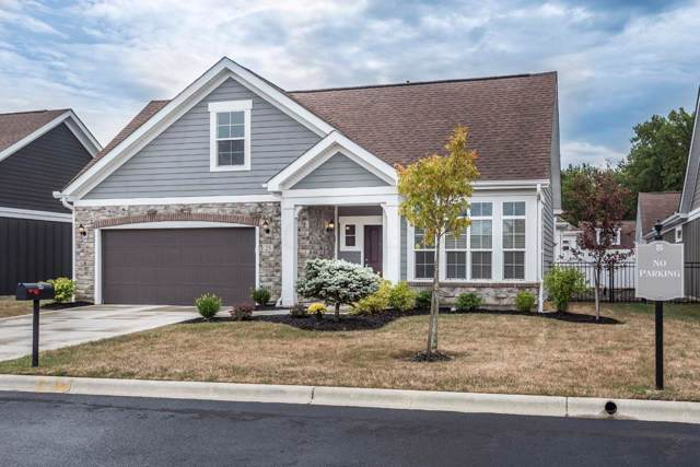 25 Whistling Way Drive, Lewis Center, OH 43035 (MLS #219035012) :: Susanne Casey & Associates