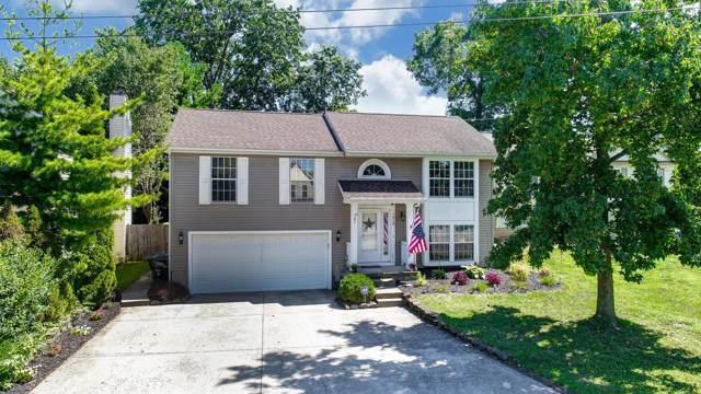 7018 Finchley Drive, Reynoldsburg, OH 43068 (MLS #219035052) :: Brenner Property Group | Keller Williams Capital Partners