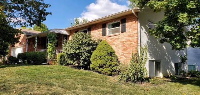 5700 Countrie Side Drive, Galloway, OH 43119 (MLS #219035192) :: Brenner Property Group | Keller Williams Capital Partners
