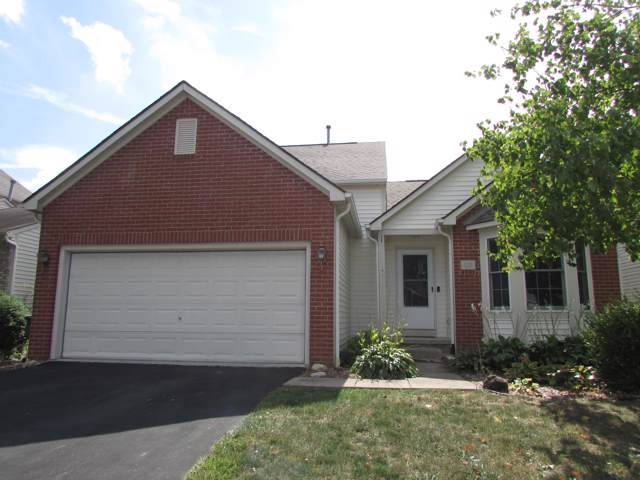 325 Holly Grove Road, Lewis Center, OH 43035 (MLS #219035219) :: Keith Sharick | HER Realtors