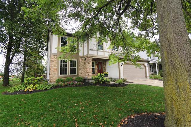8368 English Oak Drive, Westerville, OH 43081 (MLS #219035453) :: Susanne Casey & Associates
