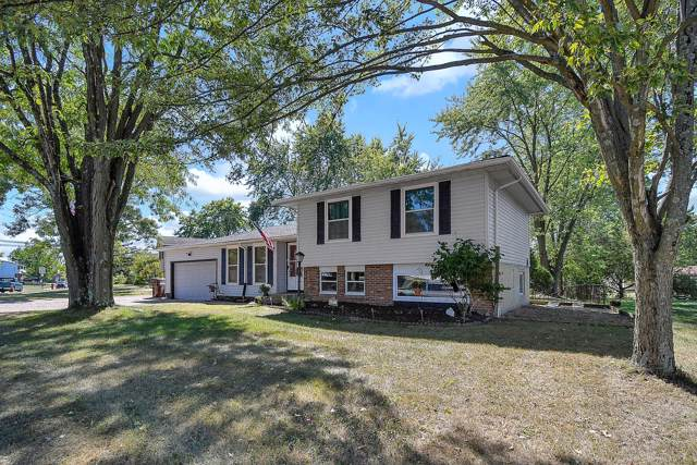 6301 Carthage Drive, Westerville, OH 43081 (MLS #219035530) :: Huston Home Team