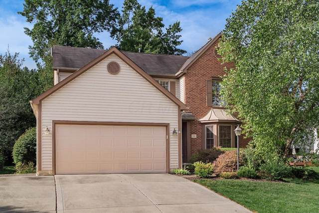 241 Thornapple Trail, Delaware, OH 43015 (MLS #219035618) :: RE/MAX ONE