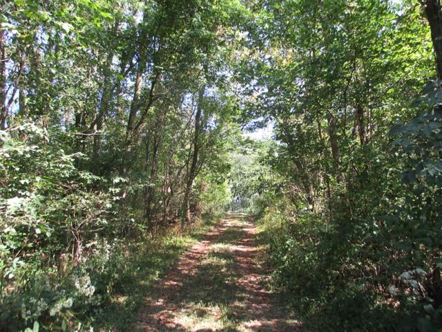 5815 Township Road 14, Mount Gilead, OH 43338 (MLS #219035931) :: Susanne Casey & Associates