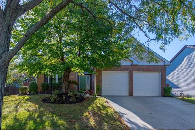 4908 Wallington Drive, Hilliard, OH 43026 (MLS #219036325) :: Signature Real Estate