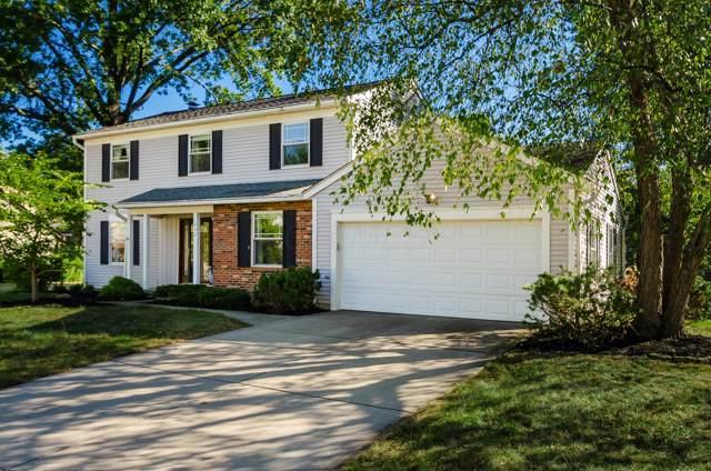 446 Seranade Street, Reynoldsburg, OH 43068 (MLS #219036422) :: Huston Home Team