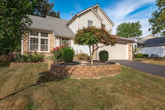 3091 Highland Park Drive, Pickerington, OH 43147 (MLS #219036662) :: Huston Home Team