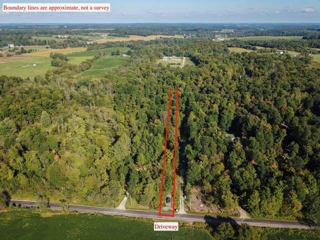 5695 County Road 98, Mount Gilead, OH 43338 (MLS #219037222) :: CARLETON REALTY