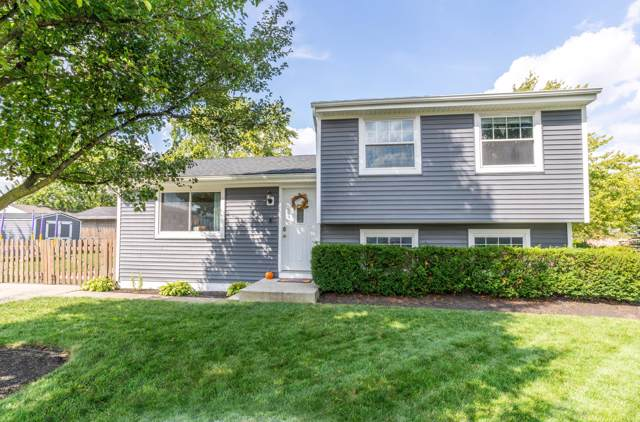 2461 Mczand Boulevard, Grove City, OH 43123 (MLS #219037298) :: Keller Williams Excel