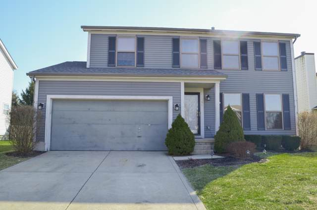 794 Tricolor Drive, Reynoldsburg, OH 43068 (MLS #219037506) :: The Raines Group