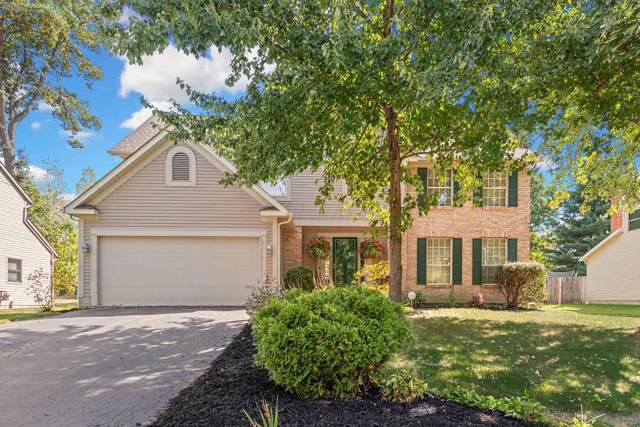 546 Helmbright Drive, Columbus, OH 43230 (MLS #219037685) :: RE/MAX ONE