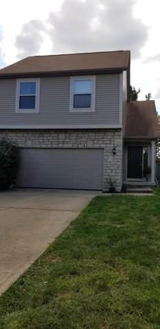203 N Miller Drive, Sunbury, OH 43074 (MLS #219037974) :: Keller Williams Excel