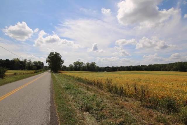 00 Domigan Road, Sunbury, OH 43074 (MLS #219038059) :: Keller Williams Excel