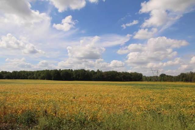 000 Domigan Road, Sunbury, OH 43074 (MLS #219038064) :: Keller Williams Excel