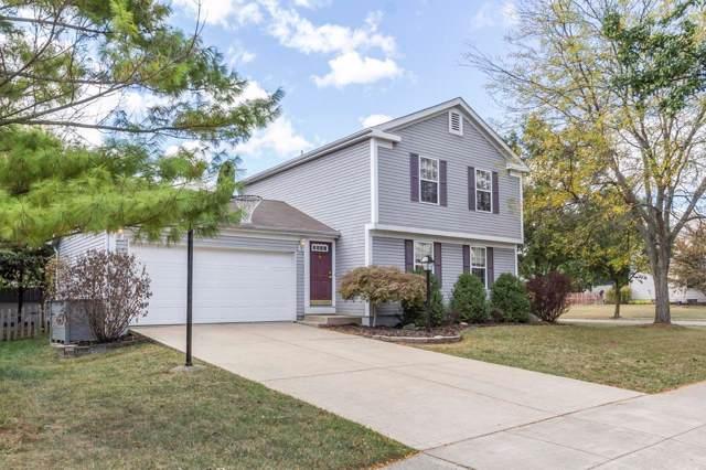 4421 Swenson Street, Hilliard, OH 43026 (MLS #219038089) :: Signature Real Estate