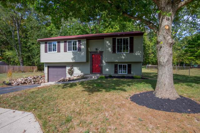 8982 Robinson Court, Galloway, OH 43119 (MLS #219038772) :: Huston Home Team