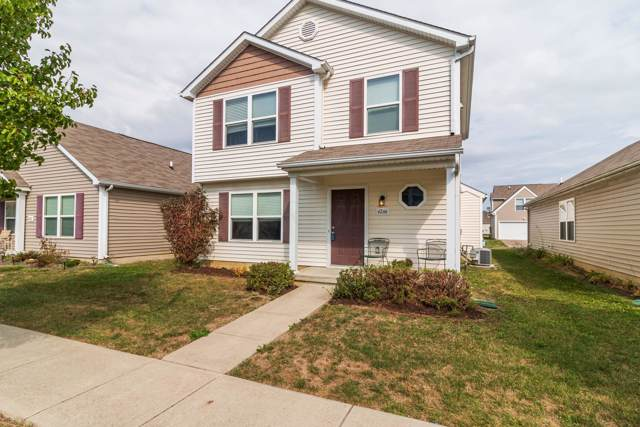 6266 Red Glare Drive #244, Galloway, OH 43119 (MLS #219038791) :: Shannon Grimm & Partners Team