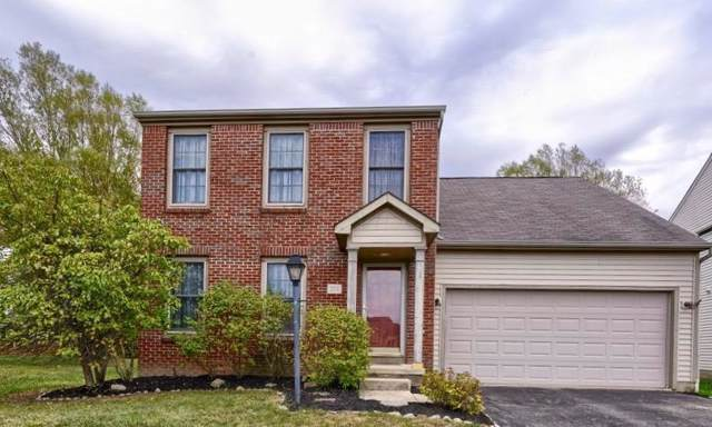 254 Westmark Court, Galloway, OH 43119 (MLS #219038903) :: Huston Home Team