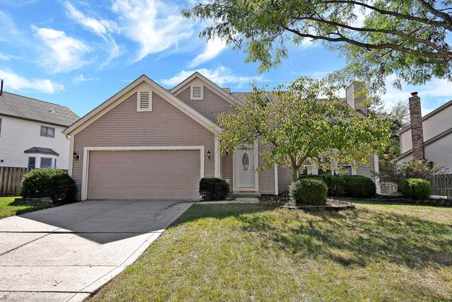 8441 Sealyham Drive, Reynoldsburg, OH 43068 (MLS #219039020) :: Core Ohio Realty Advisors