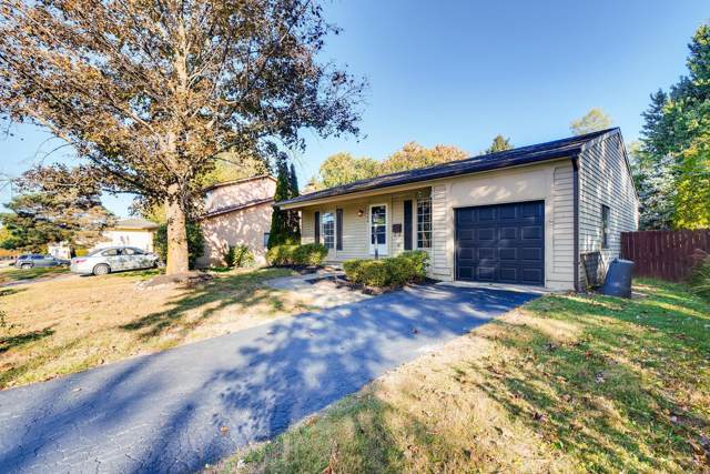 3466 Fox Run Road, Westerville, OH 43081 (MLS #219039101) :: Signature Real Estate