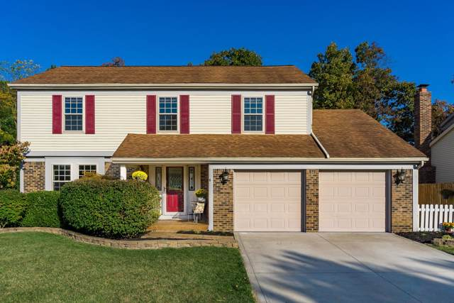 91 Spicewood Lane, Powell, OH 43065 (MLS #219039370) :: RE/MAX ONE