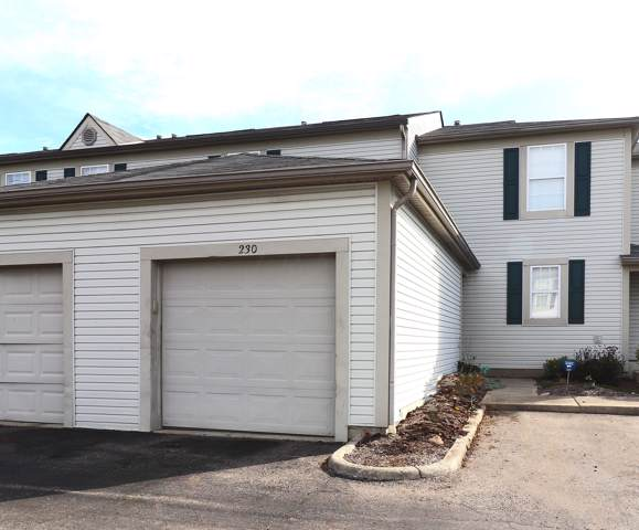 230 Macdougall Lane, Blacklick, OH 43004 (MLS #219039384) :: Signature Real Estate