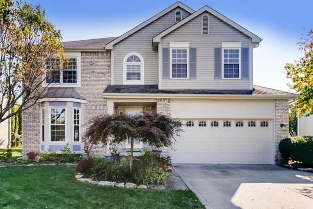 8365 Bedlington Drive, Reynoldsburg, OH 43068 (MLS #219039428) :: ERA Real Solutions Realty