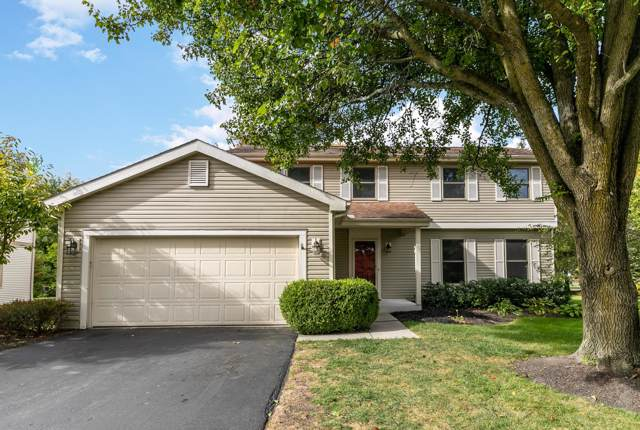 6919 Fallen Timbers Drive, Dublin, OH 43017 (MLS #219039653) :: The Clark Group @ ERA Real Solutions Realty