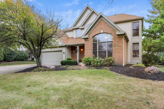 1125 Sea Shell Drive, Westerville, OH 43082 (MLS #219039699) :: Susanne Casey & Associates