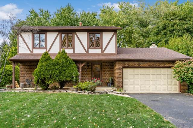 1224 Slade Avenue, Columbus, OH 43235 (MLS #219039715) :: Susanne Casey & Associates