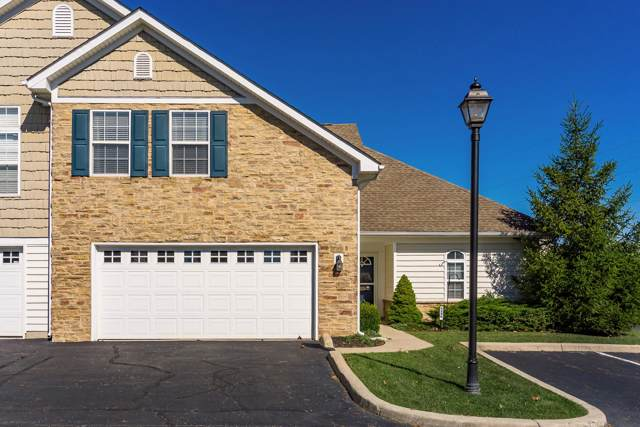 6286 Albany Brooke Drive, Westerville, OH 43081 (MLS #219040074) :: Exp Realty