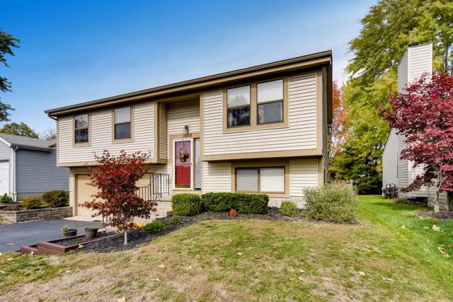 1600 Grayling Court, Columbus, OH 43235 (MLS #219040099) :: Exp Realty