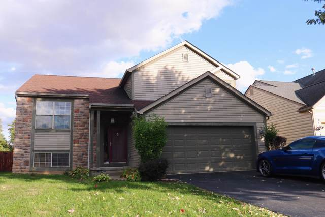 3856 Eastrise Drive, Groveport, OH 43125 (MLS #219040100) :: Exp Realty