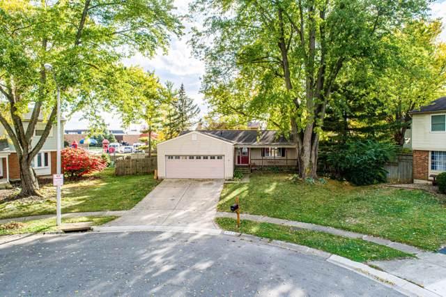 6263 Rosebay Court, Westerville, OH 43081 (MLS #219040214) :: Signature Real Estate
