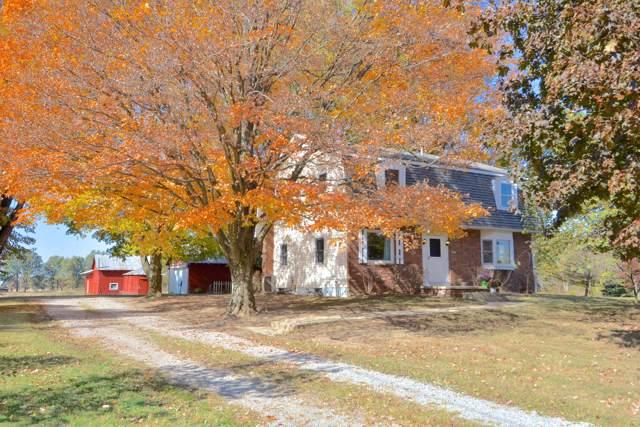 3001 N County Road 605, Sunbury, OH 43074 (MLS #219040368) :: Sam Miller Team