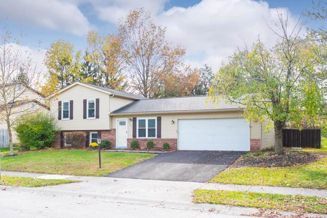 122 Rock Creek Drive, Delaware, OH 43015 (MLS #219041698) :: Susanne Casey & Associates