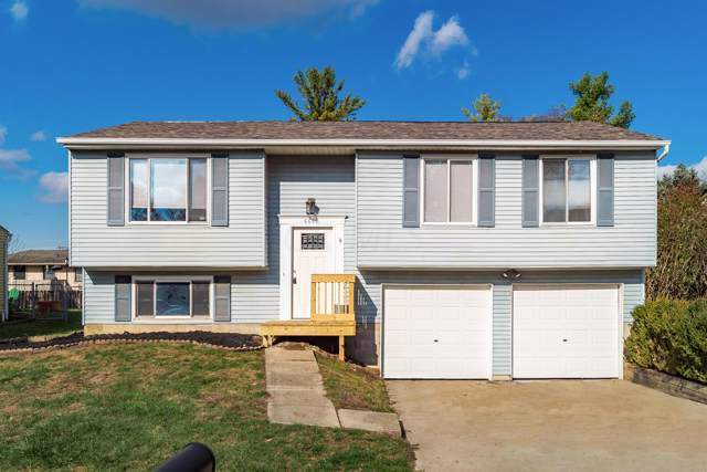 6608 Benjamin Drive, Reynoldsburg, OH 43068 (MLS #219041999) :: RE/MAX ONE