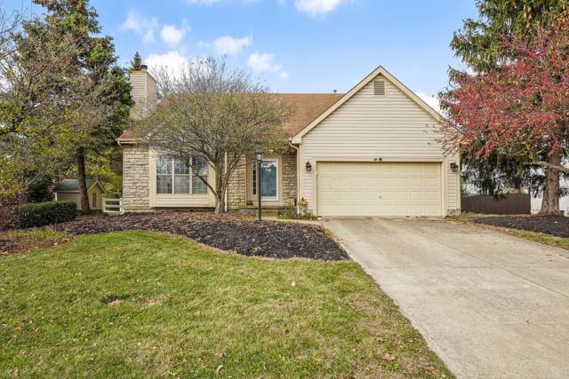 7070 Lake Valley Drive, Westerville, OH 43082 (MLS #219042090) :: Exp Realty