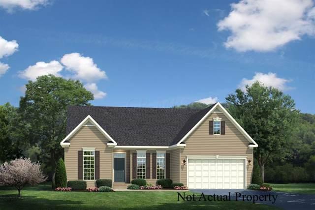 6318 Alum Creek Drive, Galena, OH 43021 (MLS #219042163) :: Signature Real Estate