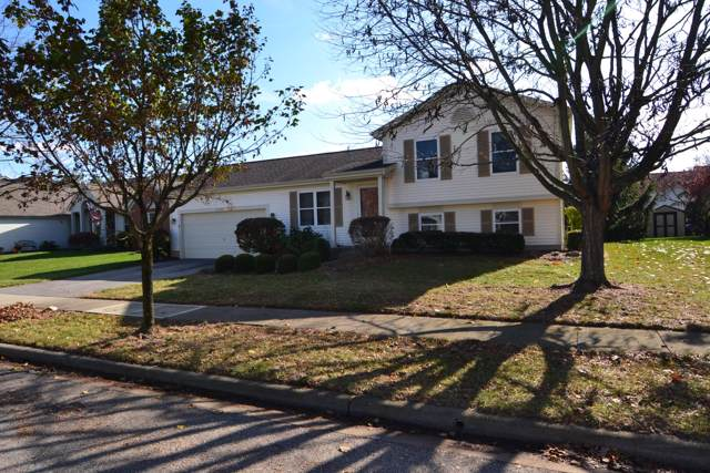 5095 Perrywinkle Court, Groveport, OH 43125 (MLS #219042271) :: RE/MAX ONE