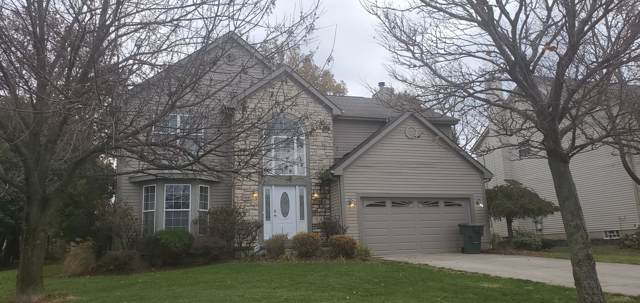 6641 Saylor Court, Canal Winchester, OH 43110 (MLS #219042559) :: The Raines Group