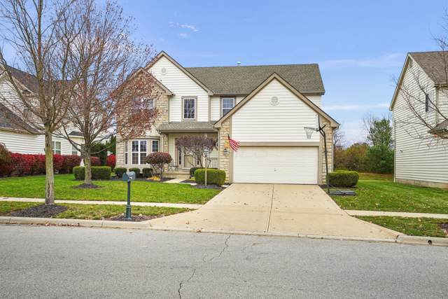 7447 Scioto Chase Boulevard, Powell, OH 43065 (MLS #219042606) :: Berrien | Faust Group